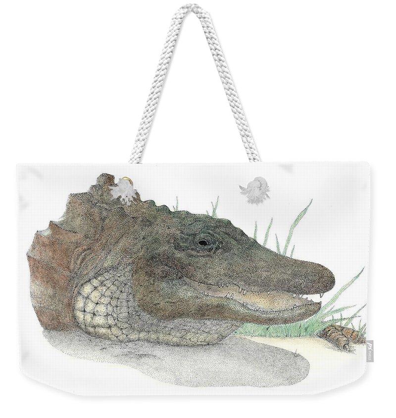 Gator Weekender Tote Bag featuring the drawing Gator by David Weaver