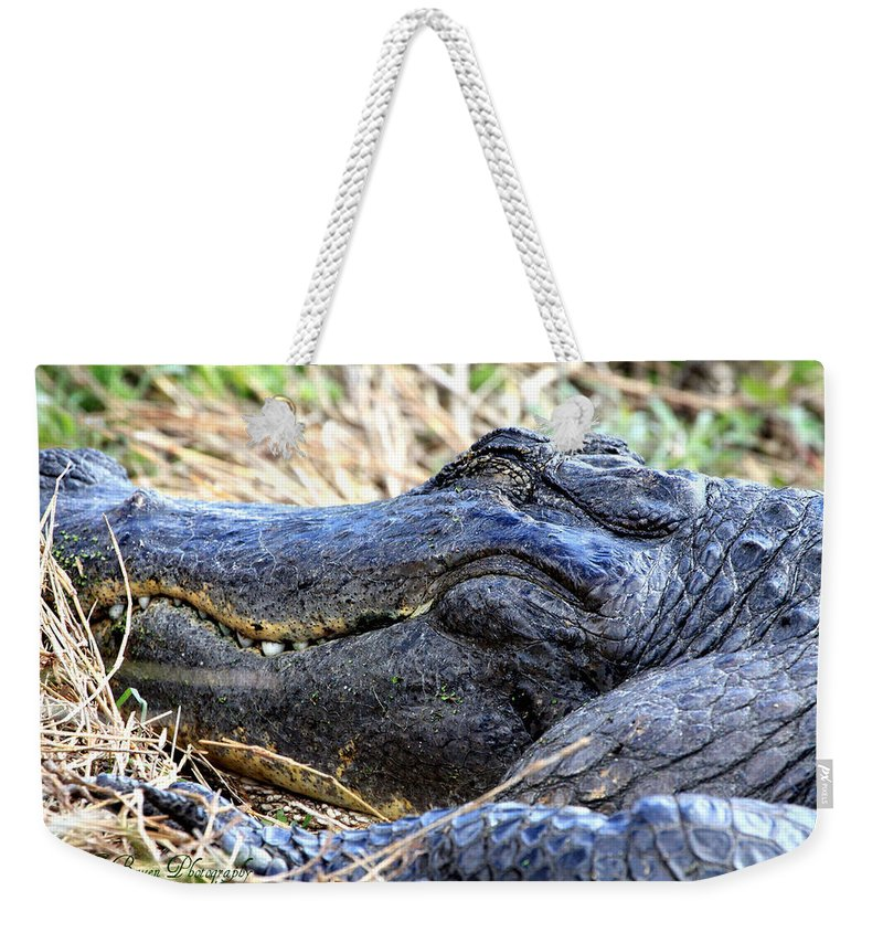 American Alligator Weekender Tote Bag featuring the photograph Gator Head by Barbara Bowen