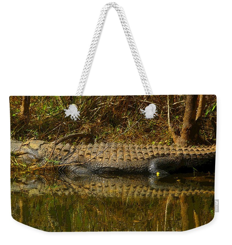 Art Weekender Tote Bag featuring the painting Gator Relection by David Lee Thompson