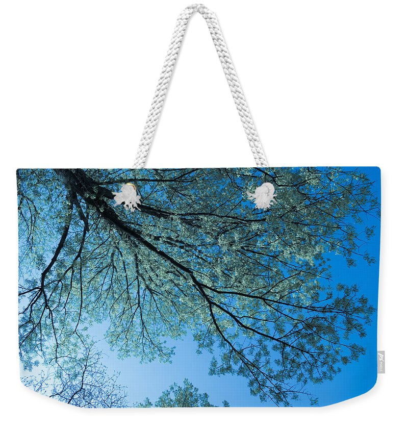 Scenic Weekender Tote Bag featuring the photograph Gazing by Scott Wyatt