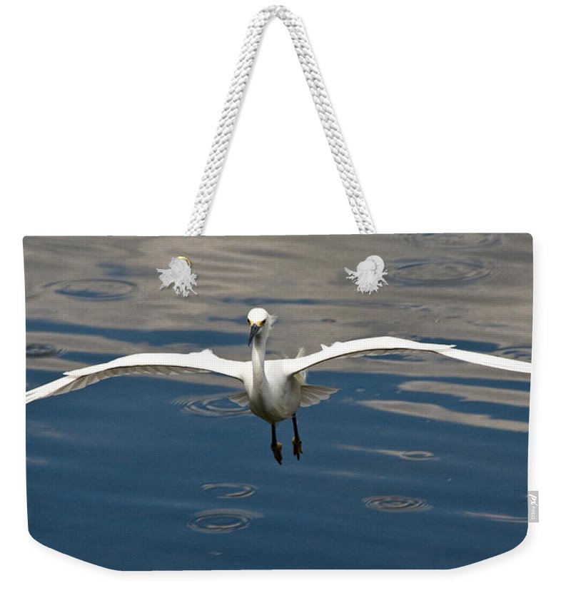 Snowy Egret Weekender Tote Bag featuring the photograph Gear Down by Christopher Holmes