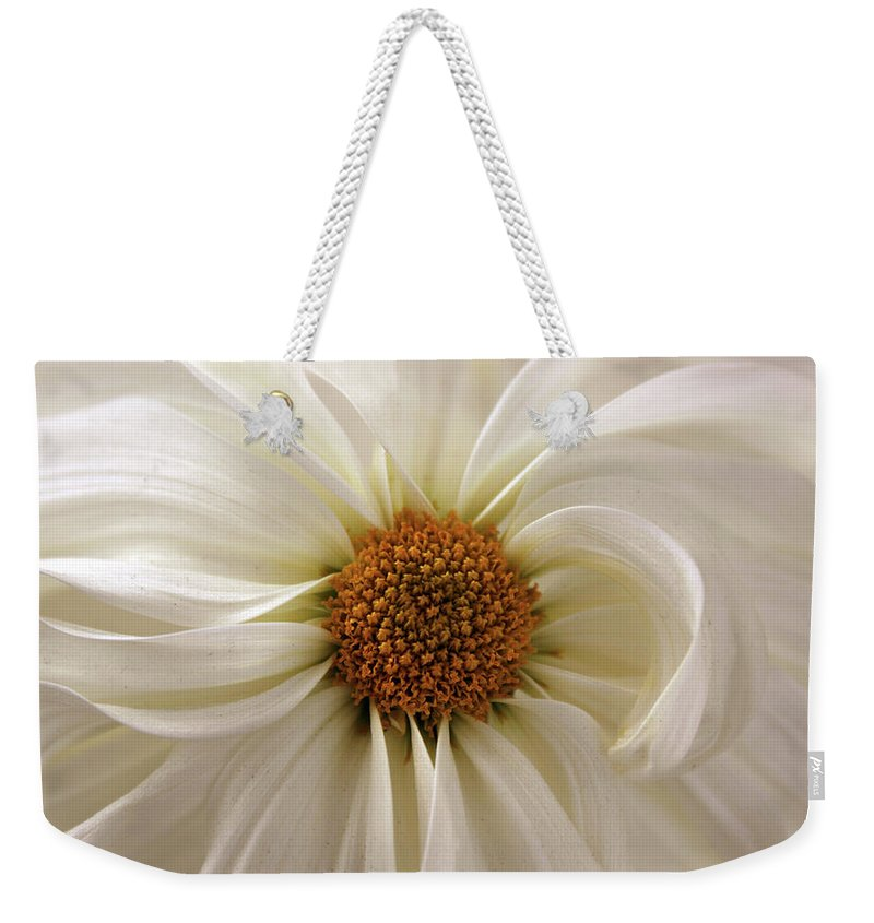 Chrysanthemum Weekender Tote Bag featuring the photograph Gentle Curves by Jessica Jenney
