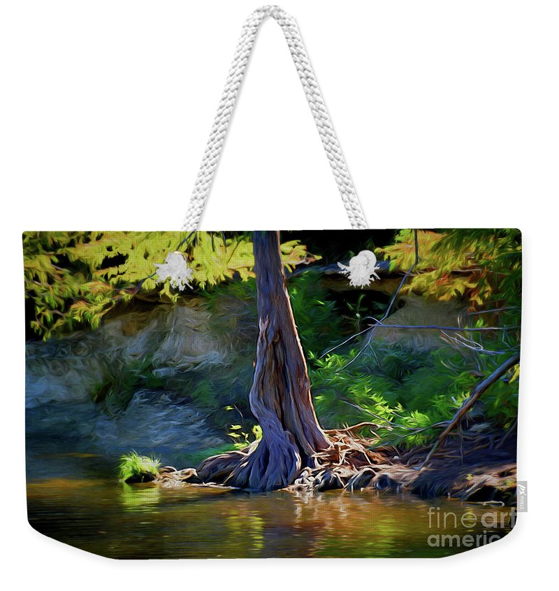 Gentle Giant 122317-1 Weekender Tote Bag featuring the photograph Gentle Giant 122317-1 by Ray Shrewsberry