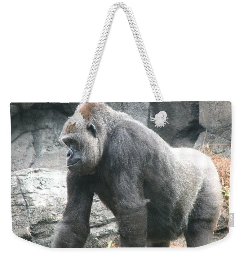 Gorilla Weekender Tote Bag featuring the photograph Gentle Giant by Stacey May