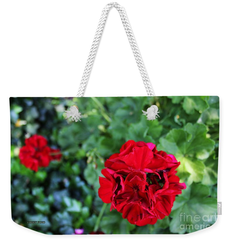 Geranium Weekender Tote Bag featuring the painting Geranium Flower - Red by Corey Ford