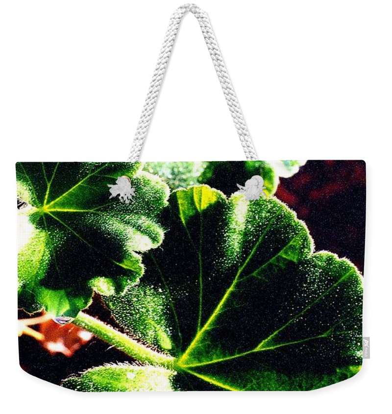 Geraniums Weekender Tote Bag featuring the photograph Geranium Leaves by Nancy Mueller