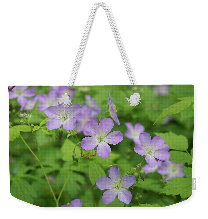 Flowers Weekender Tote Bag featuring the photograph Geraniums Spring Wildflowers by Michael Peychich