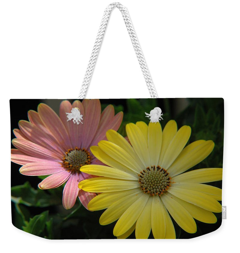 Flower Weekender Tote Bag featuring the photograph Gerber Daisies by Jerry McElroy