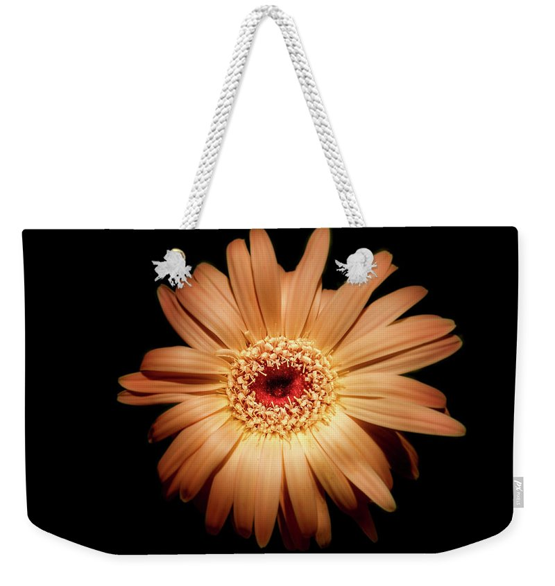 Photography Weekender Tote Bag featuring the digital art Gerbera On Black by Terry Davis