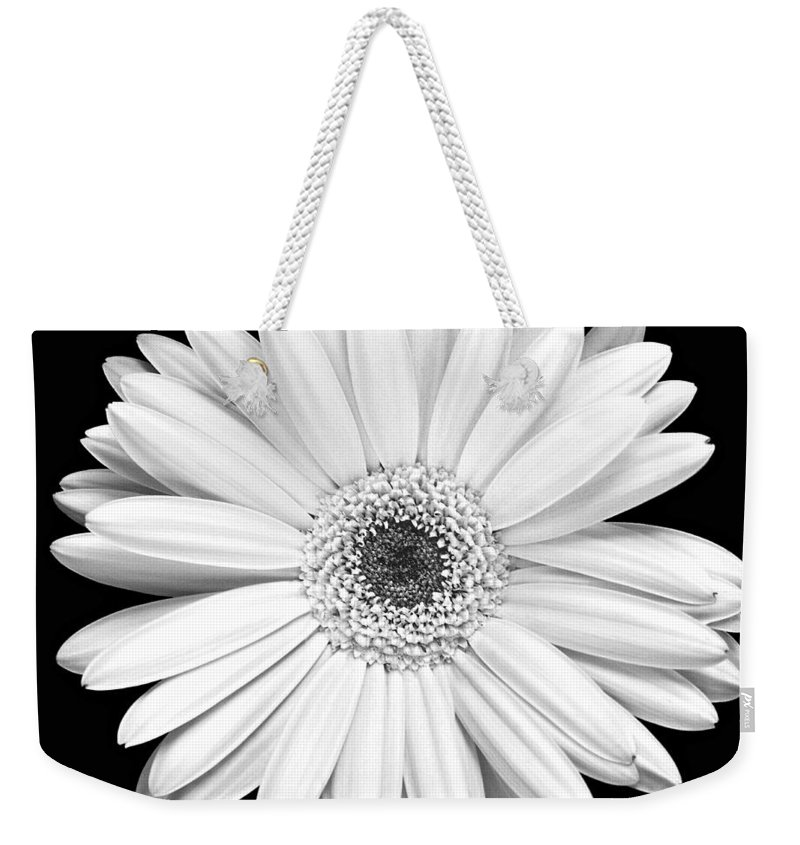 Gerber Weekender Tote Bag featuring the photograph Single Gerbera Daisy by Marilyn Hunt