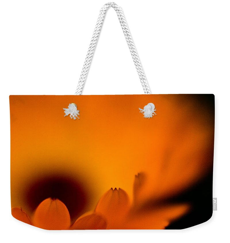 Flower Weekender Tote Bag featuring the photograph Gerbera Fire by Mike Reid