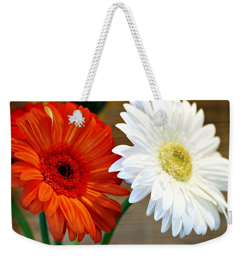 Flower Weekender Tote Bag featuring the photograph Gerbers by Marilyn Hunt
