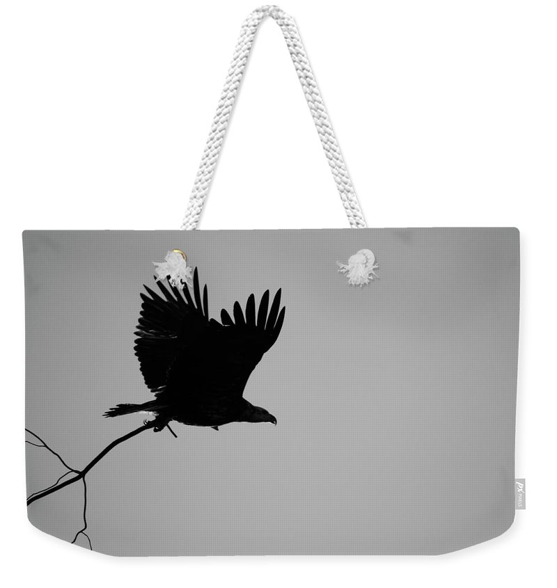 Eagle Weekender Tote Bag featuring the photograph Getting Ready by Diana Hatcher