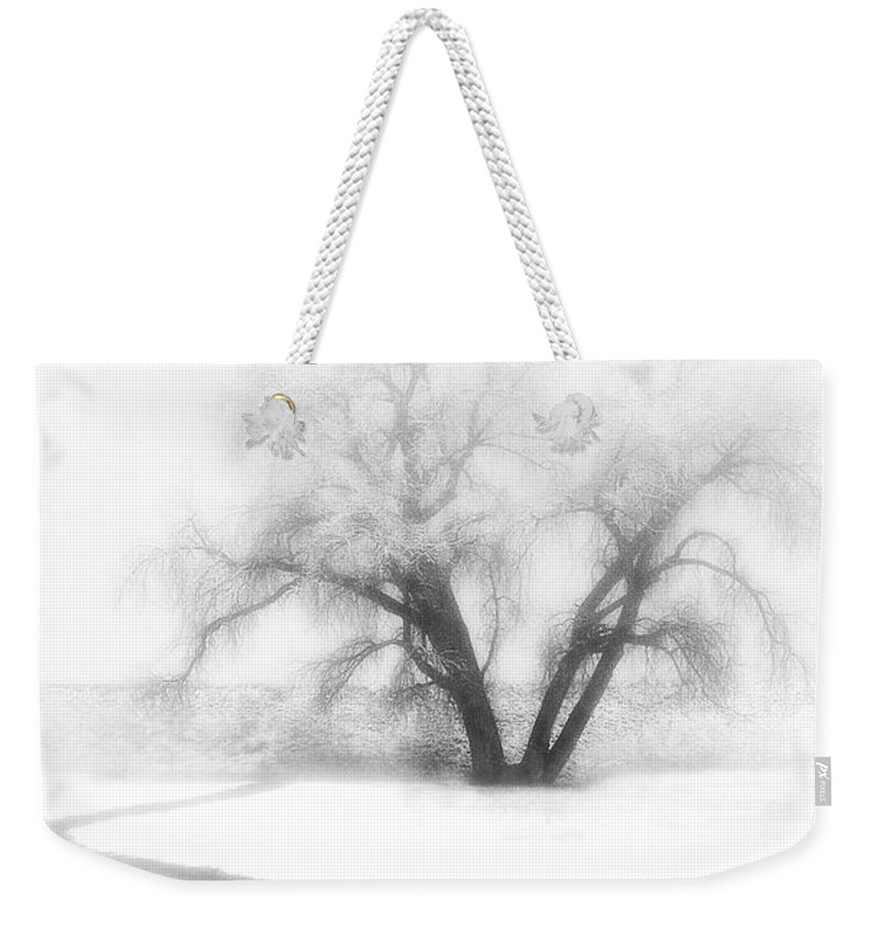 Tree Weekender Tote Bag featuring the photograph Getting There by Marilyn Hunt