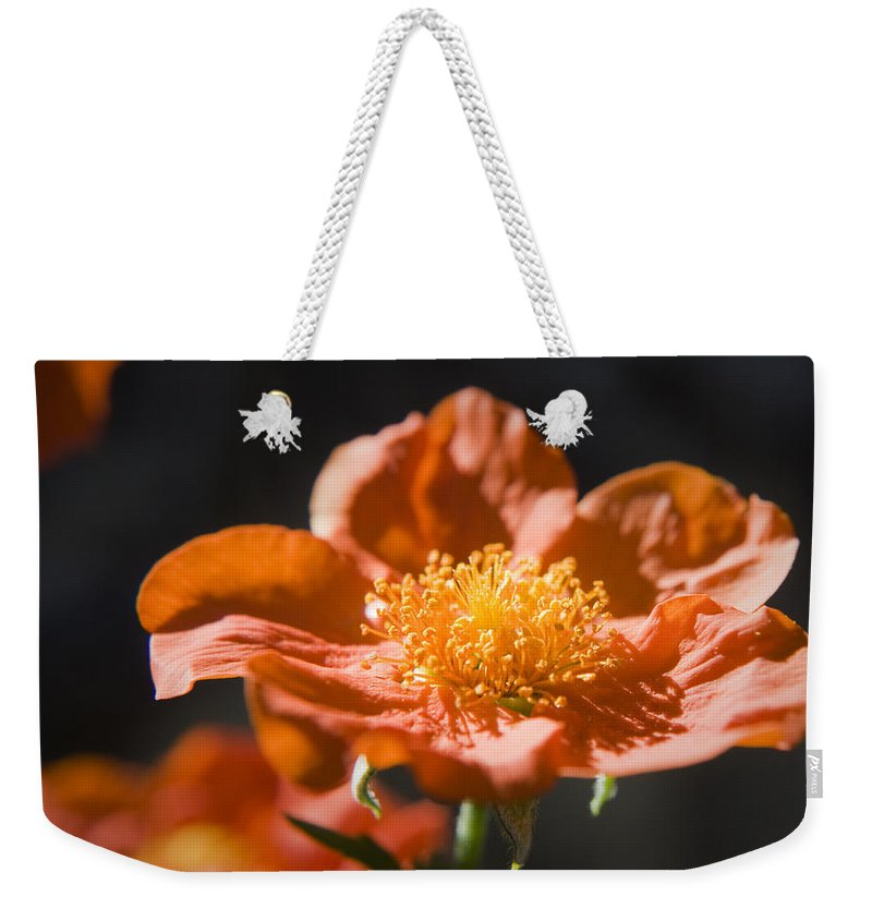 Geum Weekender Tote Bag featuring the photograph Geum Scarlet Avens by Teresa Mucha