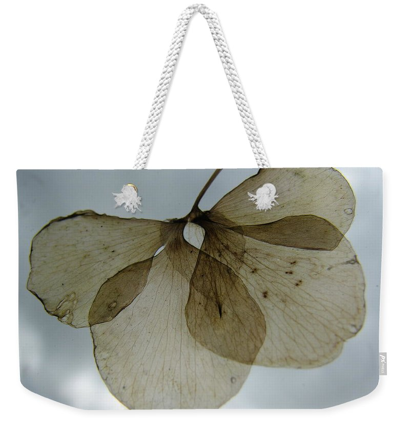 Ghostlike Weekender Tote Bag featuring the photograph Ghost of a Flower by Mary Ellen Mueller Legault