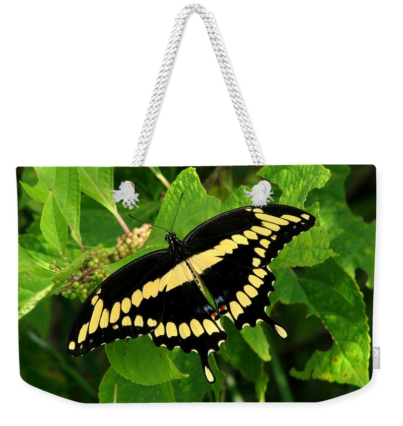 Nature Weekender Tote Bag featuring the photograph Giant by Peg Urban