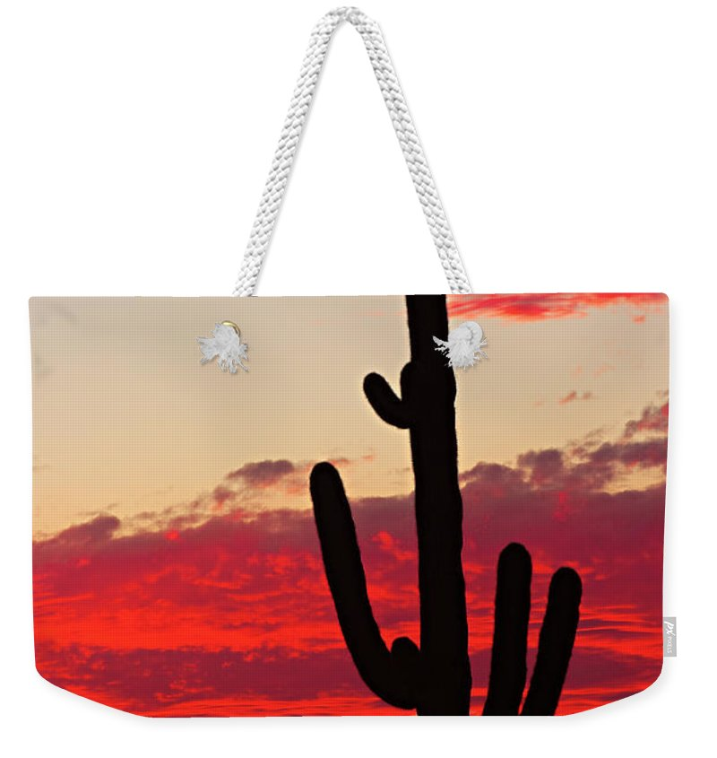 Sunset Weekender Tote Bag featuring the photograph Giant Saguaro Southwest Desert Sunset by James BO Insogna