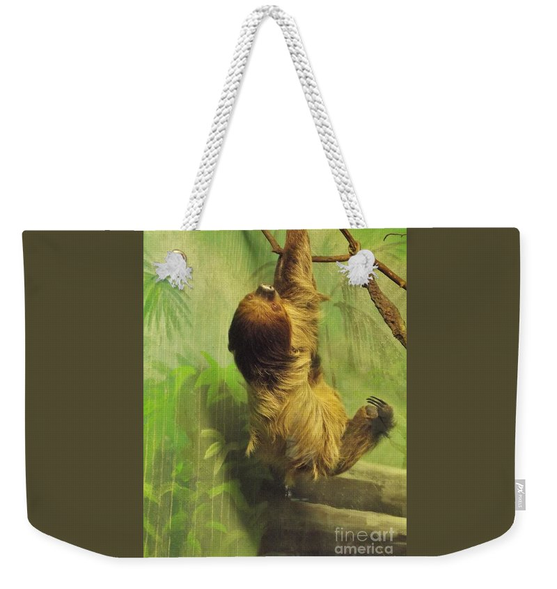 Sloth Weekender Tote Bag featuring the photograph Giant Sloth   June     Indiana by Rory Cubel
