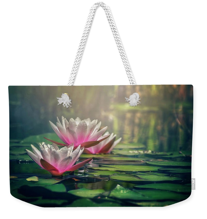 Waterlily Weekender Tote Bag featuring the photograph Gilding The Lily by Carol Japp