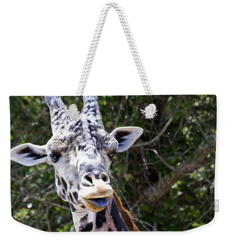 Giraffe Weekender Tote Bag featuring the photograph Giraffe Gives A Raspberry by Roger Wedegis