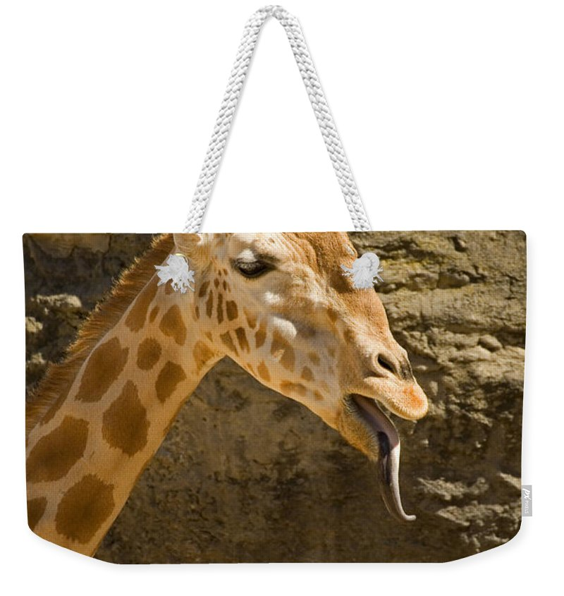 Giraffe Weekender Tote Bag featuring the photograph Giraffe Raspberry by Mike Dawson
