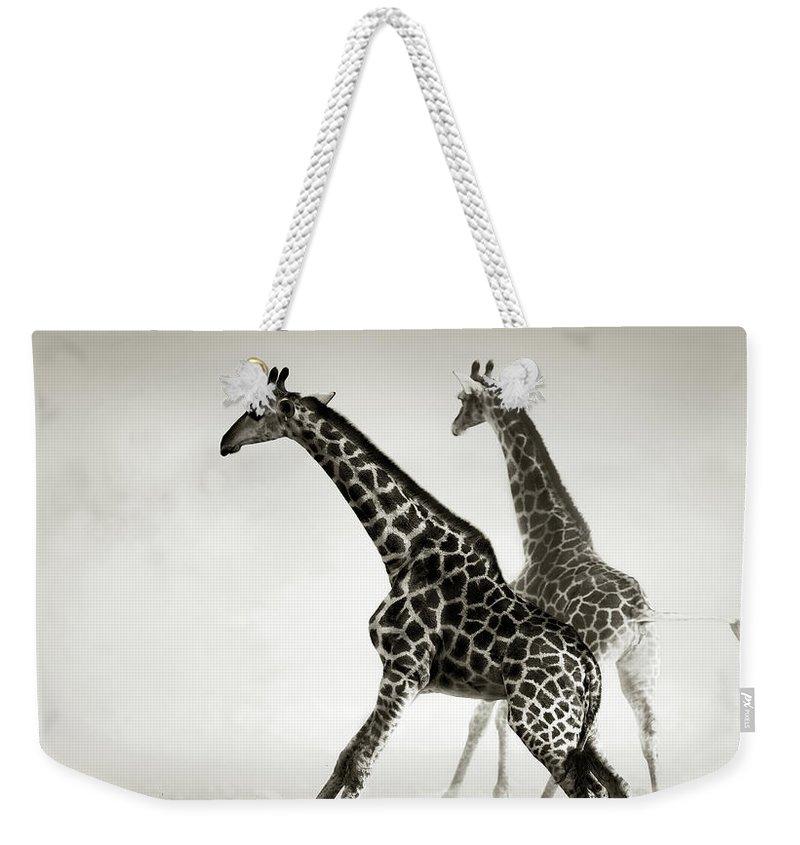 Giraffe Weekender Tote Bags