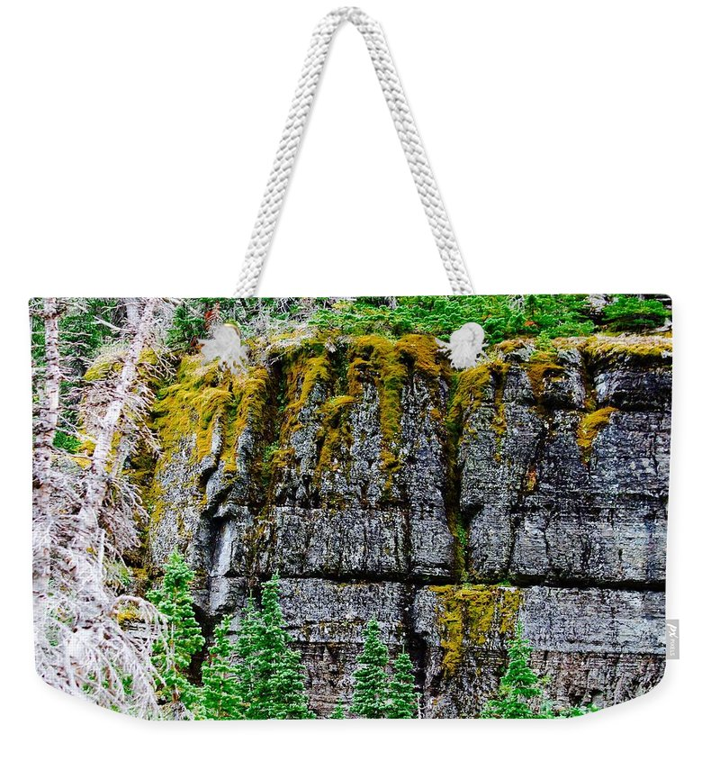 Weekender Tote Bag featuring the photograph Glacier Np Moss by Matthew Justis