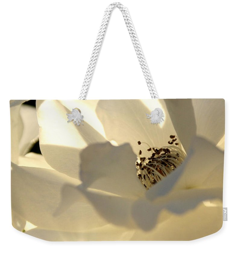 Gleaming White Rose Weekender Tote Bag featuring the photograph Gleaming White by Chris Brannen