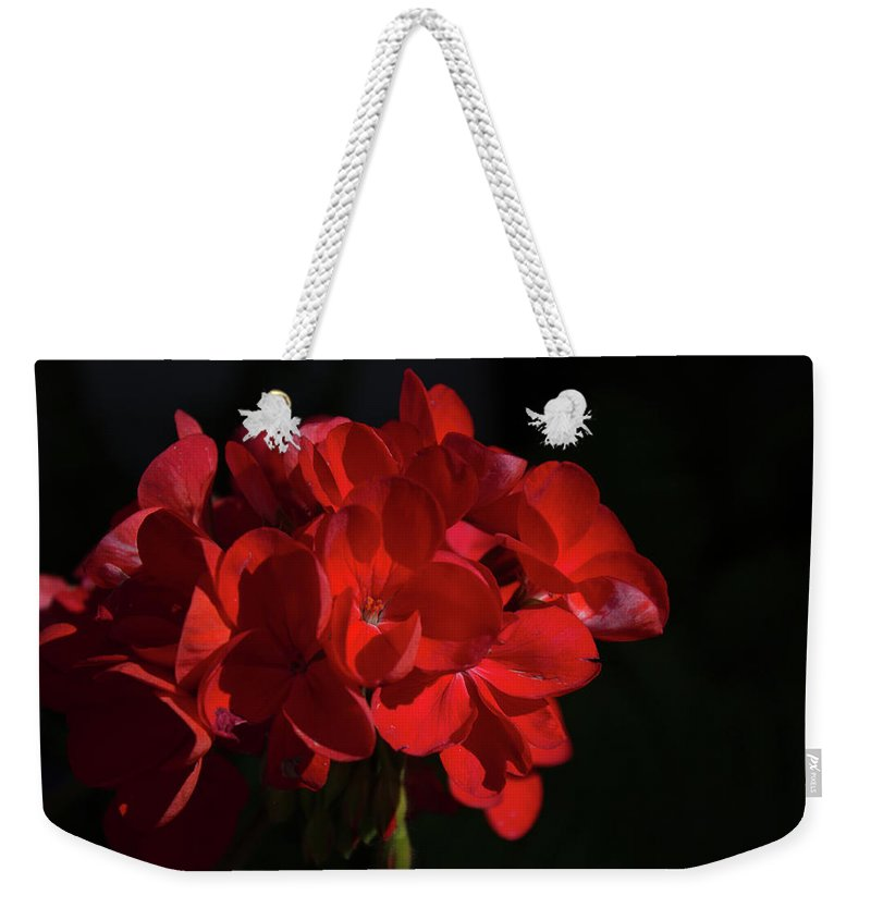 Flower Alaska Red Dark Weekender Tote Bag featuring the photograph Glowing Flower In The Dark by Wade Robert