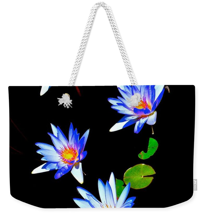 Blooms Weekender Tote Bag featuring the photograph Glowing In The Sun by Tim G Ross