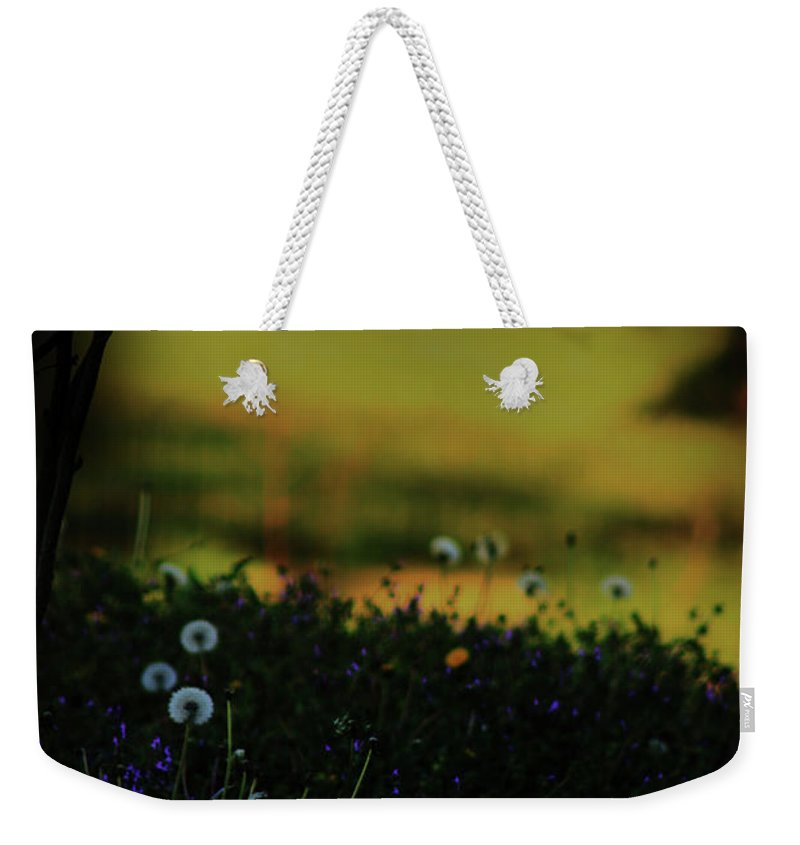 Nature Weekender Tote Bag featuring the photograph Glowing by Kim Henderson