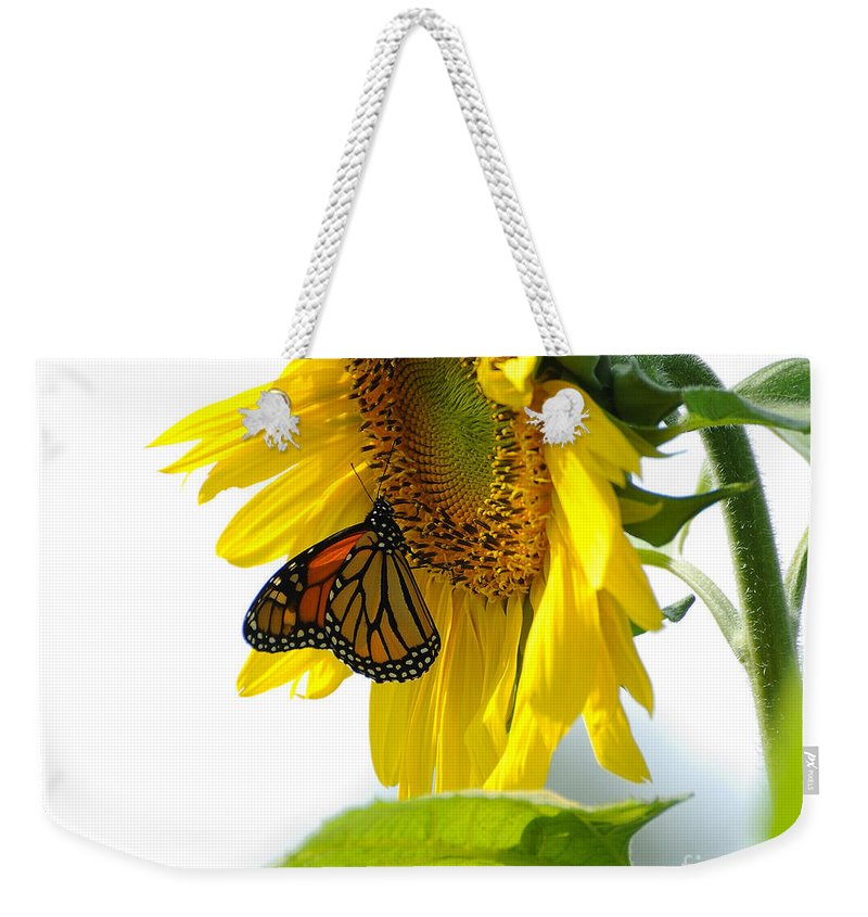 Butterfly Weekender Tote Bag featuring the photograph Glowing Monarch On Sunflower by Edward Sobuta