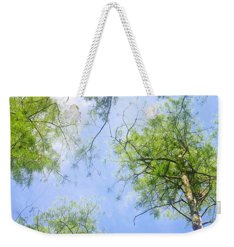 Weekender Tote Bag featuring the photograph Glowing Trees by Jane Merrit