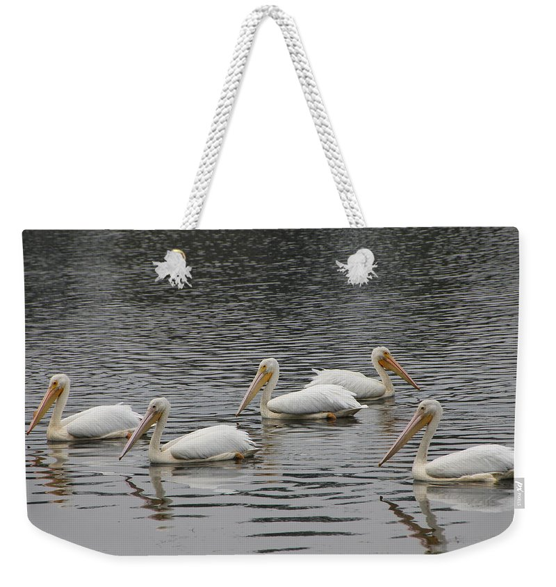 Bird Weekender Tote Bag featuring the photograph Go Your Own Way by Laura Martin