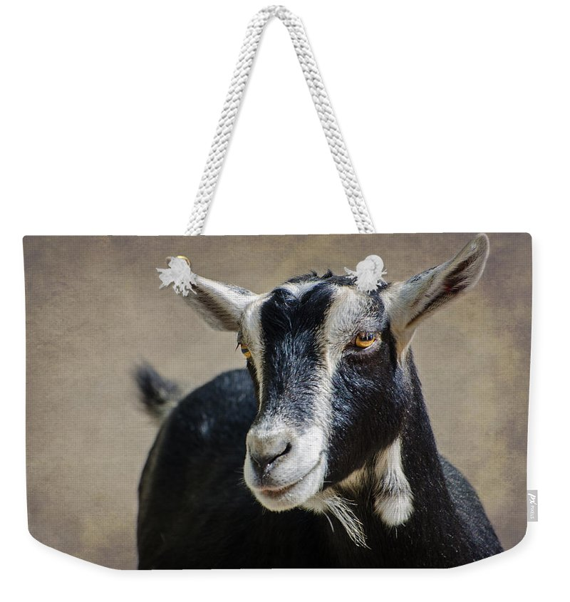 Goat Weekender Tote Bag featuring the photograph Goat 2 by Susan McMenamin