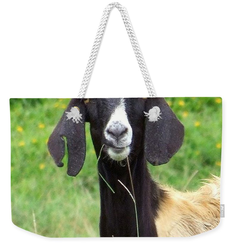 Black Weekender Tote Bag featuring the photograph Goat Dental Floss by Mary Deal