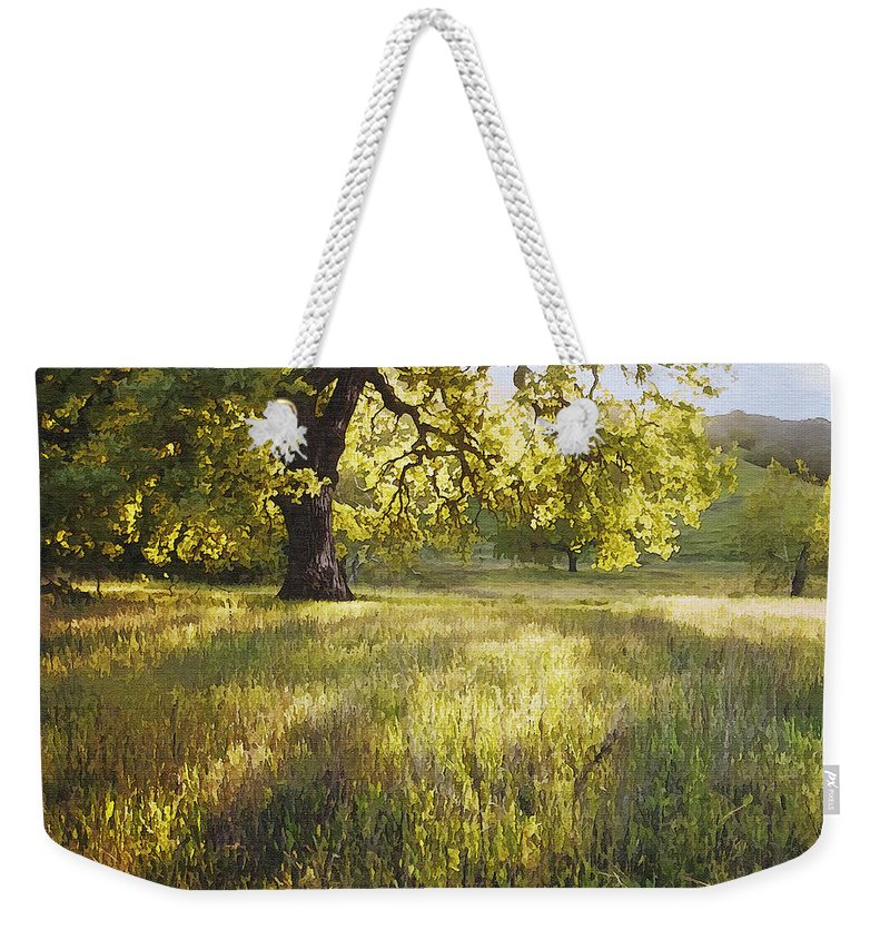 Landscape Weekender Tote Bag featuring the photograph God Light by Sharon Foster