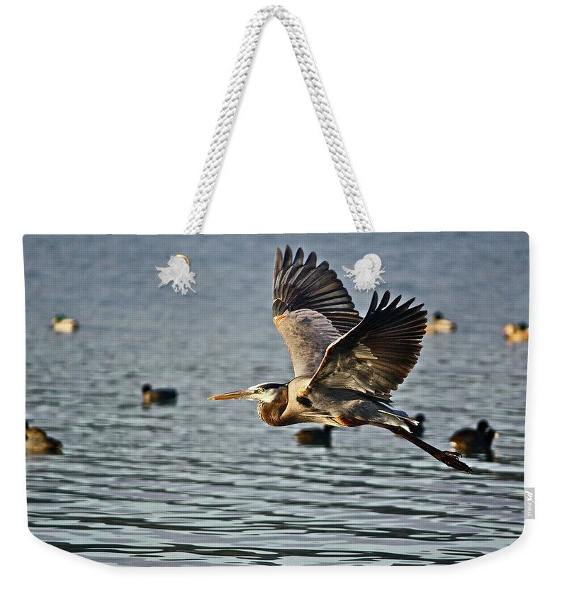 Birds Weekender Tote Bag featuring the photograph Going Up by Diana Hatcher