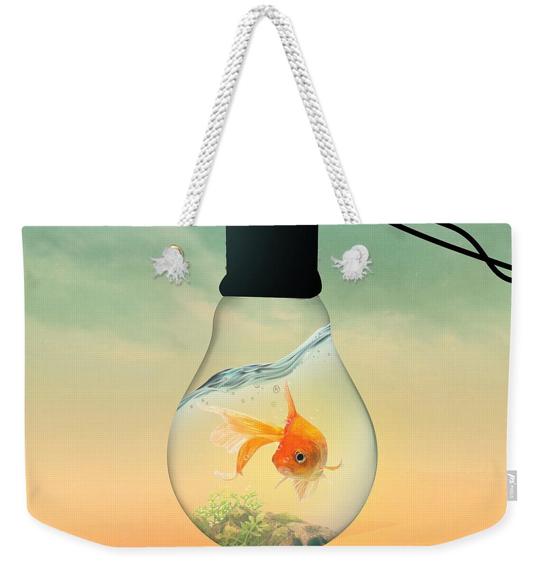 Animals Weekender Tote Bag featuring the painting Gold Fish 4 by Mark Ashkenazi