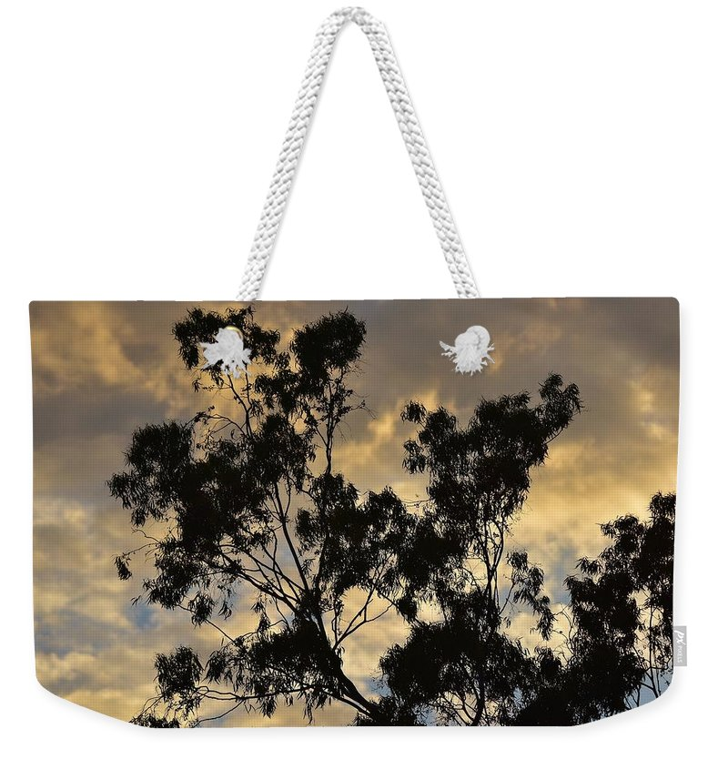 Linda Brody Weekender Tote Bag featuring the photograph Gold Sunset Tree Silhouette I by Linda Brody