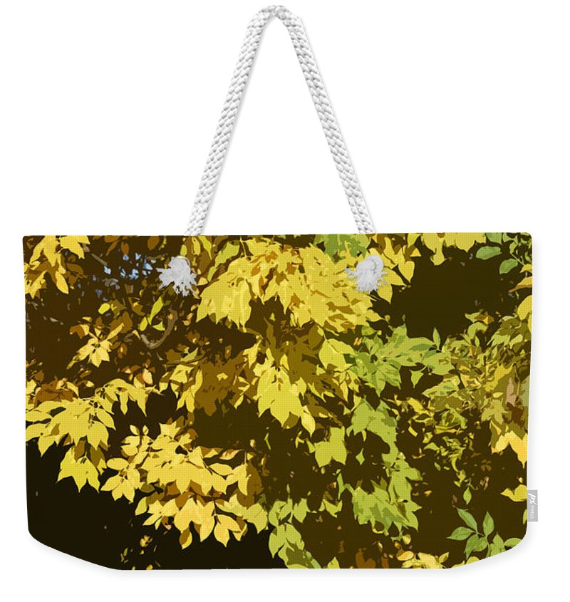 Autumn Weekender Tote Bag featuring the photograph Golden Branches by Carol Lynch