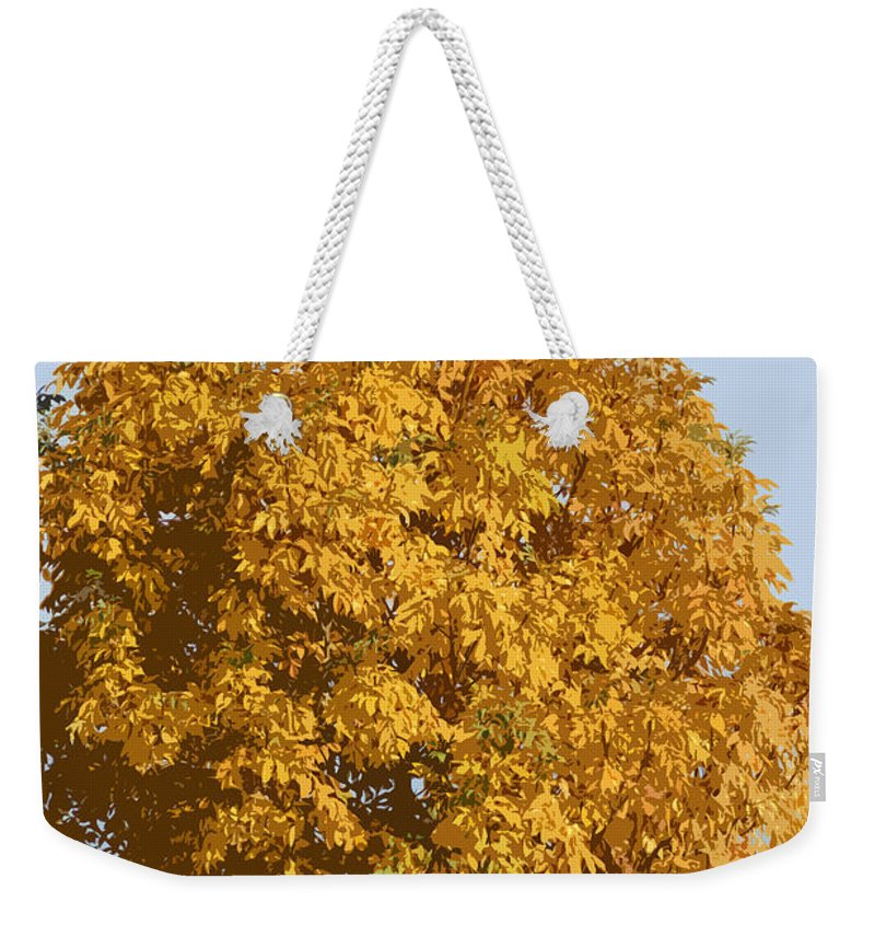 Autumn Weekender Tote Bag featuring the photograph Golden Branches Round by Carol Lynch