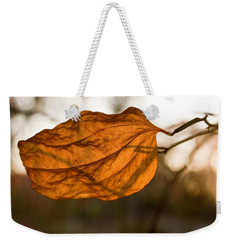 Golden Weekender Tote Bag featuring the photograph Golden Briar Leaf by Douglas Barnett