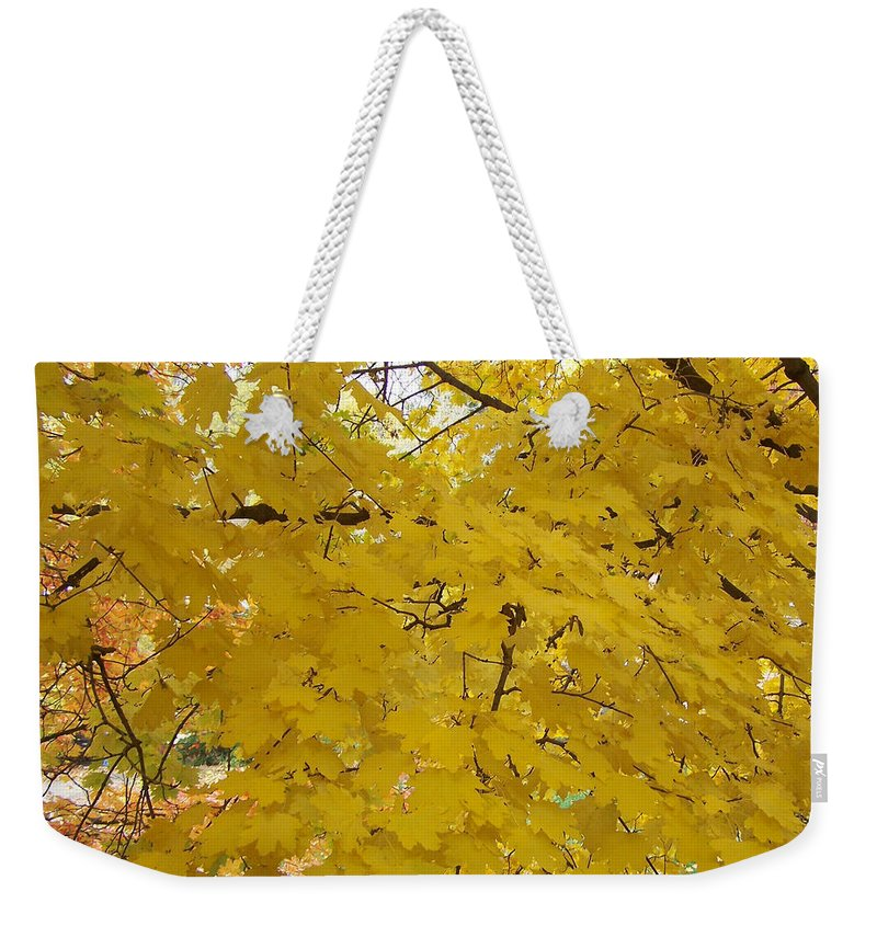 Fall Autum Trees Maple Yellow Weekender Tote Bag featuring the photograph Golden Canopy by Karin Dawn Kelshall- Best