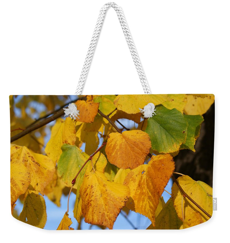 Autumn Weekender Tote Bag featuring the photograph Golden by Carol Lynch