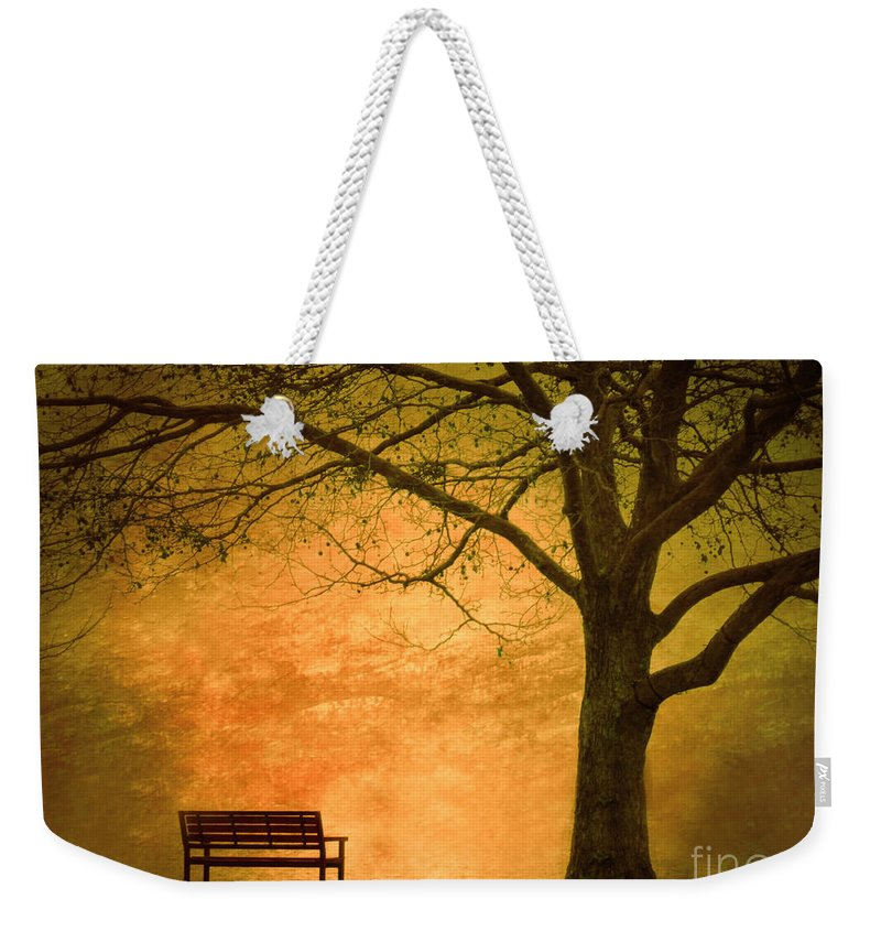 Texture Weekender Tote Bag featuring the photograph Golden Dawn by Tara Turner