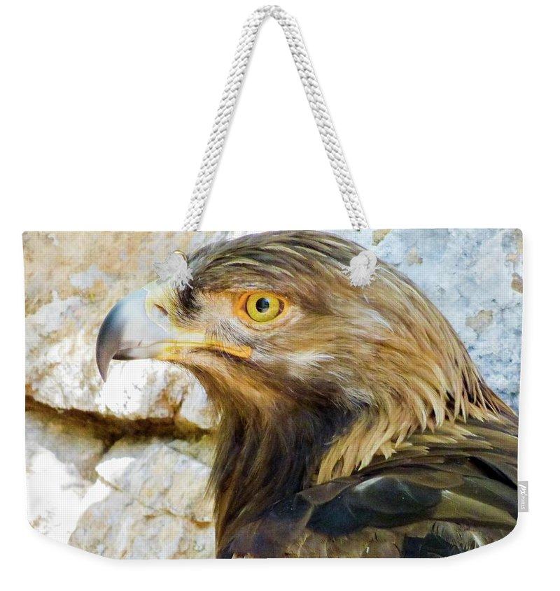 #orcinusfotograffy #arizona #phoenix #zoo #golden #eagle #beak #eyes #nature #animal #colors Weekender Tote Bag featuring the photograph Golden Eagle by Kimo Fernandez