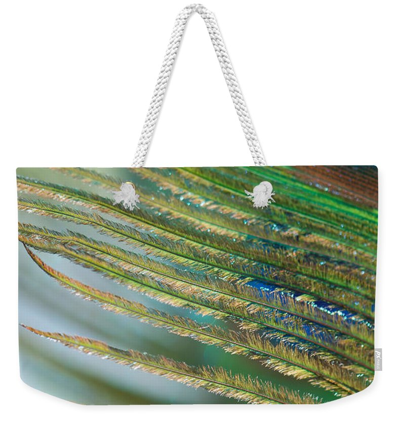 Golden Weekender Tote Bag featuring the photograph Golden Feather by Lisa Knechtel