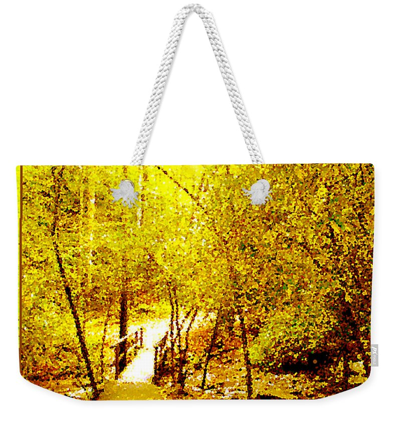 Golden Glow Weekender Tote Bag featuring the photograph Golden Glow by Seth Weaver